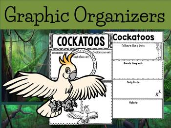 Graphic Organizers: Cockatoos - Oceania Animals : Australia, New Zealand