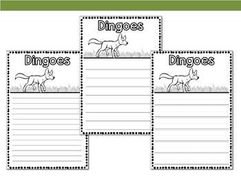 Graphic Organizers: Dingoes - Oceania Animals : Australia, New Guinea