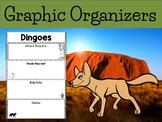 Graphic Organizers Bundle : Dingoes - Oceania Animals : Australia, New Guinea