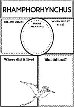 Graphic Organizers Bundle : Dinosaurs : Rhamphorynchus