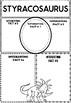 Graphic Organizers: Dinosaurs : Styracosaurus