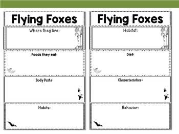 Graphic Organizers: Flying Foxes - Oceania Animals : Australia, New Guinea, Etc.