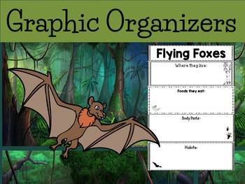 Graphic Organizers Bundle : Flying Foxes - Animals : Australia, New Guinea