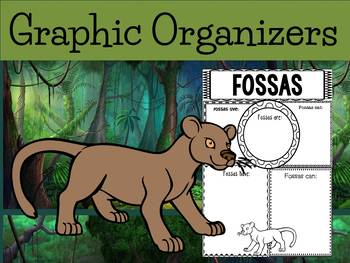Graphic Organizers: Fossas / The Fossa - Oceania Animals : Madagascar