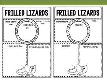 Graphic Organizers: Frilled Lizards - Oceania Animals : Australia, New Guinea