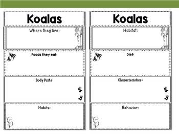 Graphic Organizers Bundle : Koalas - Oceania Animals : Australia, New Zealand