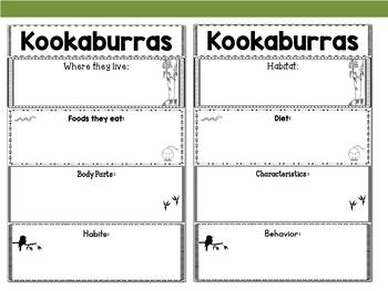 Graphic Organizers: Kookaburras - Oceania Animals :Australia, New Zealand, Etc.