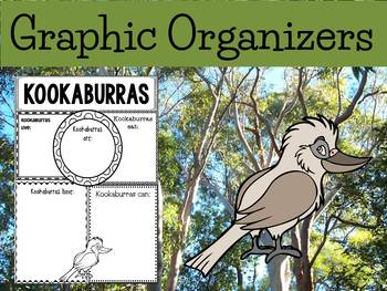 Graphic Organizers Bundle : Kookaburras - Animals : Australia, New Zealand
