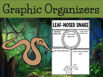Graphic Organizers: Leaf-nosed Snake (spear snake) : Madagascar, Australia, Etc.