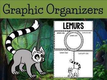 Graphic Organizers: Lemurs - Oceania Animals :Madagascar, Australia, Etc.