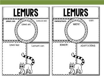 Graphic Organizers Bundle: Lemurs - Oceania Animals :Madagascar, Australia