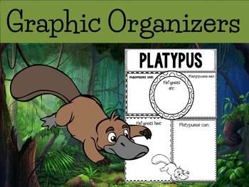 Graphic Organizers: Platypus- Oceania Animals :Madagascar, Australia, Etc.