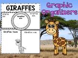 Graphic Organizers Set : Giraffes