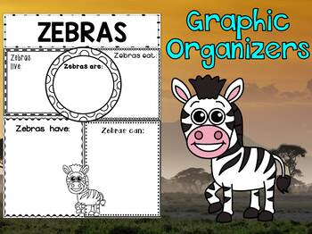 Graphic Organizers Set : Zebras