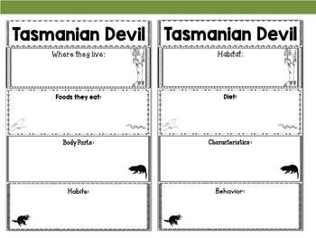 Graphic Organizers Bundle : Tasmanian Devil : Australia, Madagascar Animals