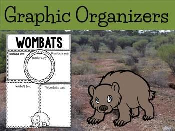 Graphic Organizers Bundle : Wombats : Oceania Animals: Australia, Madagascar