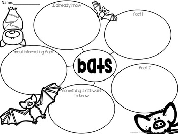 Bat Graphic Organizers (Texts Types and Purposes)