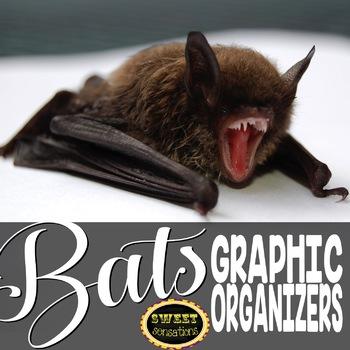 Bat Writing Activities