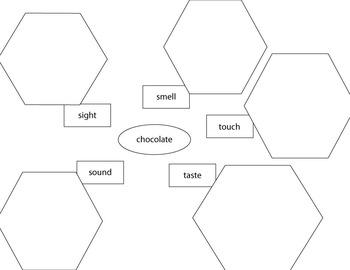 GraphicOrganizer - 5 Senses Chocolate