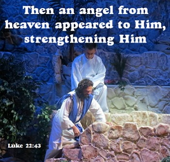Graphics: 211 copyright free scripture .JPEGS from Luke