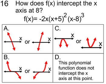 Graphing Polynomial Functions  4 Lessons + 4 Assignments for SMART