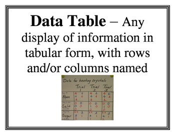 Graphing Word Wall Vocabulary