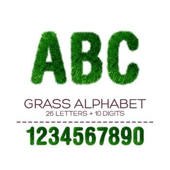 Grass Digital Alphabet - F00002