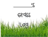 Grass Experiment Log