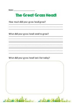 Grass Head Experiment Worksheet