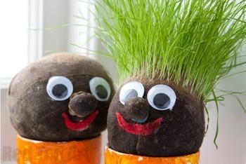 Grass Head Lesson Plans