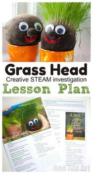 Grass Head Lesson Plans