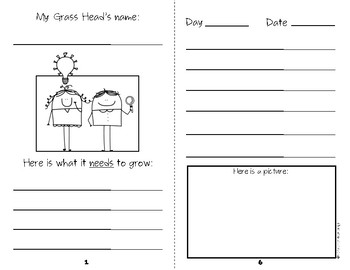 Grass Head Science Journal  {Growing Hair Experiment} Kindergarten & First Grade