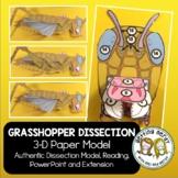Grasshopper Paper Dissection - Scienstructable 3D Dissecti