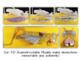 Grasshopper Dissection - 3-D Paper Model