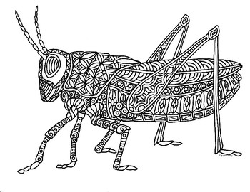 Grasshopper Insect Zentangle Coloring Page by Pamela