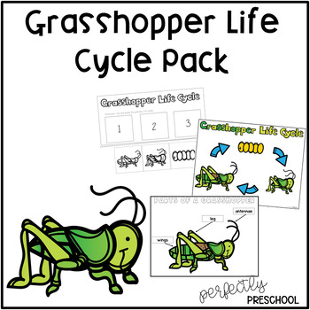 Grasshopper  Life Cycle Pack