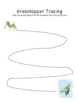 Grasshopper Tracer