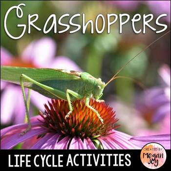 Grasshoppers Activity Pack