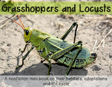 Grasshoppers and Locusts minibook on adaptations, habitats and life cycle