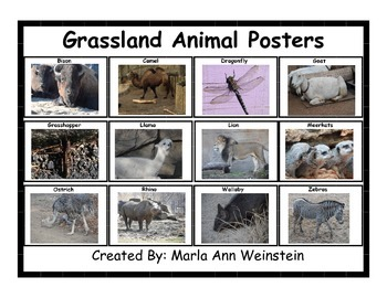 Grassland Animal Posters