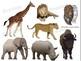 Grassland Animals Realistic Clip Art