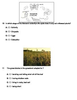 Grassland Assessment