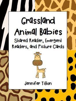 Grassland Baby Animals Shared Reader, 2 Emergent Readers a