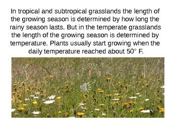 Grassland Biome PowerPoint Presentation