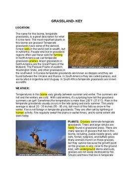Grassland Ecosystem--  CLOZE Reading