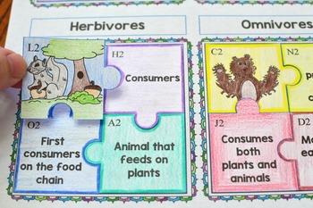 Grassland Food Web Puzzle