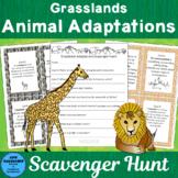 Grasslands Animal Adaptations Scavenger Hunt