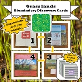 Grasslands Biome Biomimicry Discovery Cards Kit  NGSS 1-LS1-1