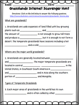 Grasslands Biome Internet Scavenger Hunt WebQuest Activity