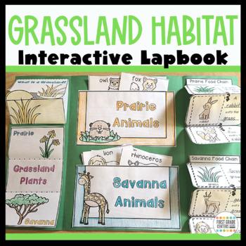 Grasslands Interactive Lapbook